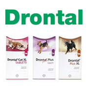 Drontal Worming Tablets Drontal For Dogs And Drontal For Cats